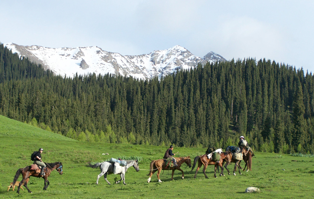 Horses are the best transport in mountains